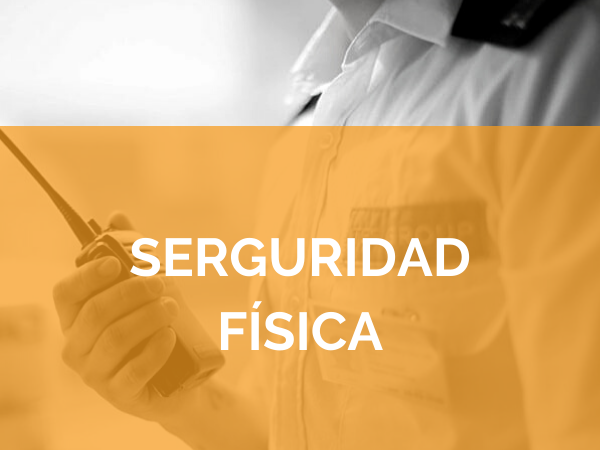 Seguridad Física - TSS Group